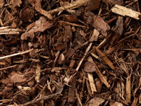 Forest Bark Mulch