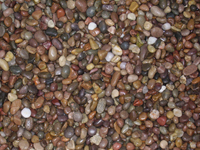 Scottish Moray Pebbles 14-20mm