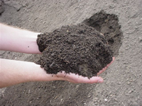 As Dug Topsoil/SORRY NOT AVAILABLE AT THE MOMENT